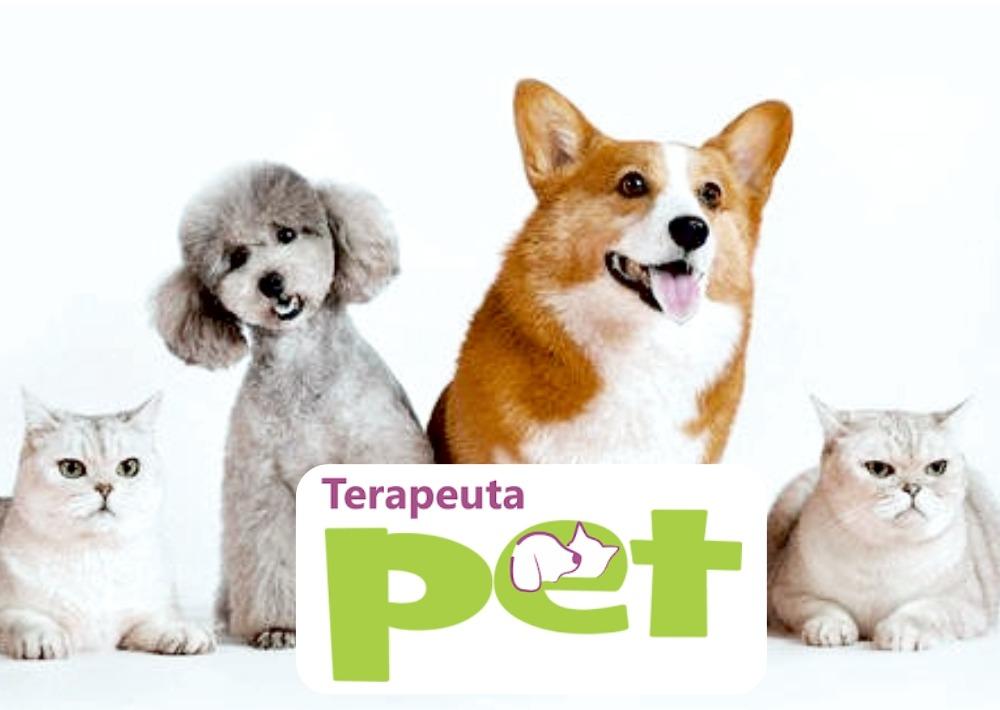Curso de Formação em Terapeuta Pet